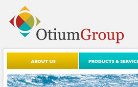 The Otium Group Website Design